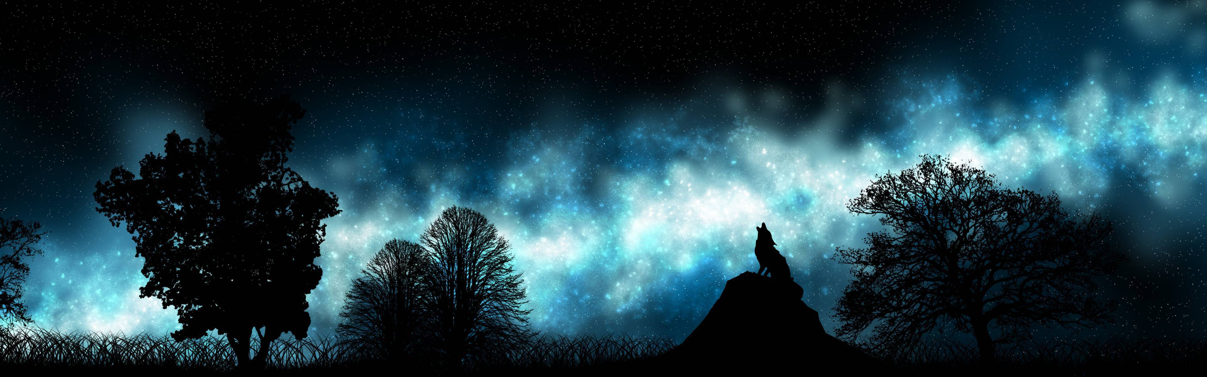 Howling at the Night Sky