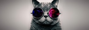 Morpheus Glasses Cat