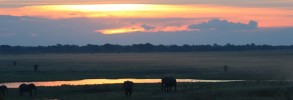 Chobe River Sunset #2