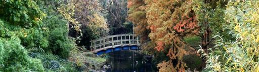 Regents park bridge